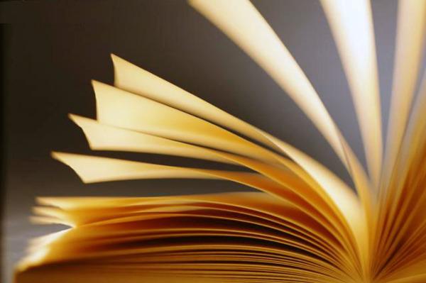El puente literario de Alfredo Espinoza